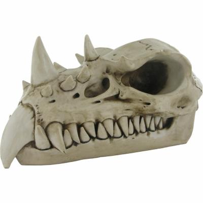 Craniu dragon